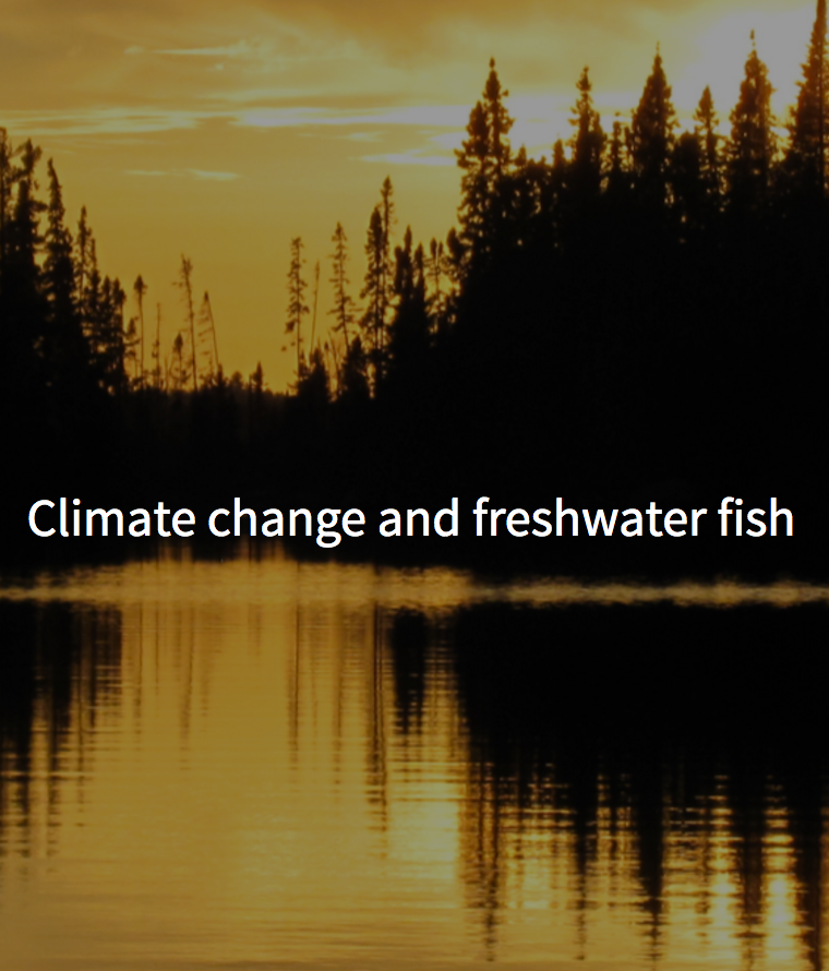 Climate change and freshwater fish